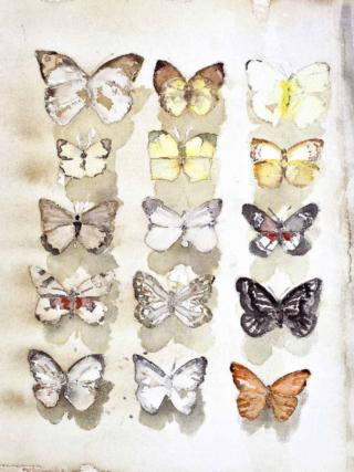 Fjärilar, Lars Lerin